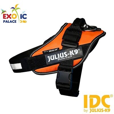 Julius-K9 Idc Powerharness uv Orange Orange Fluorescent Harness Nylon for Dog