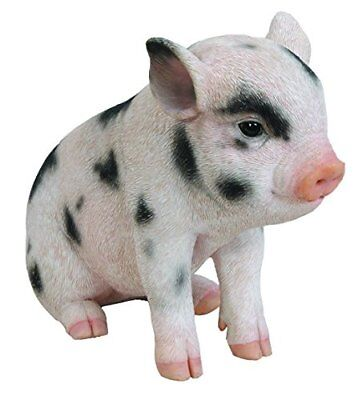 Sitting Baby PIG with Black Spots Life Like Figurine Statue Home / Garden NEW