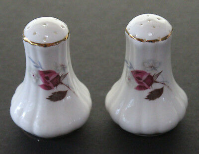 Fine Bone China Salt & Pepper Shakers Never Used  Made in England