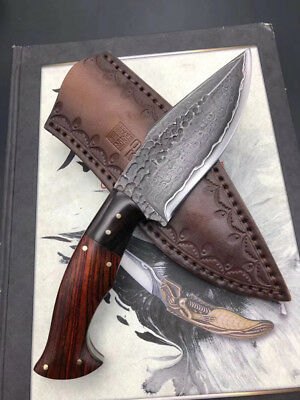 Damascus Steel Knife Survival Camping Hunting Knife Fixed Blade Knife Full Tang