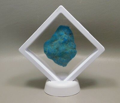Turquoise Nugget Natural Blue Stone Polished Rock in Floating Case #103