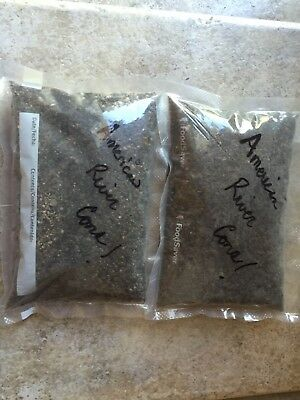 2 Pound Bag Paydirt GREAT ROI( Guaranteed atleast 1 Gram Of Gold) Rich Cons!