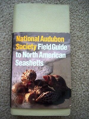 New National Audubon Society Field Guide to North American Seashells REDUCED