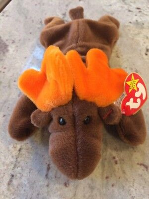b9b3d963a36 Ty Beanie Baby  Chocolate  the Moose RARE   Retired w  Errors One of