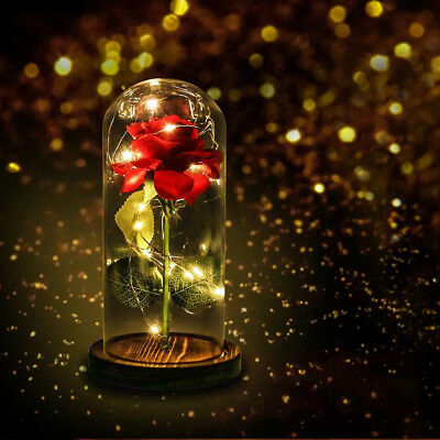 Beauty And The Beast Enchanted Rose Glass LED Lighted Wedding Home Decor Gift