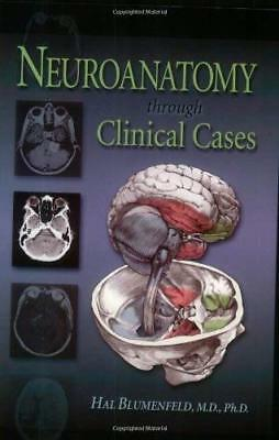 Neuroanatomy Through Clinical Cases  - by Blumenfeld
