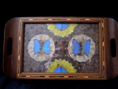"""Vintage Butterfly Tray 16"""" x 19""""  Iridescent  Blue Purple  Art Deco  Wood Inlay"""
