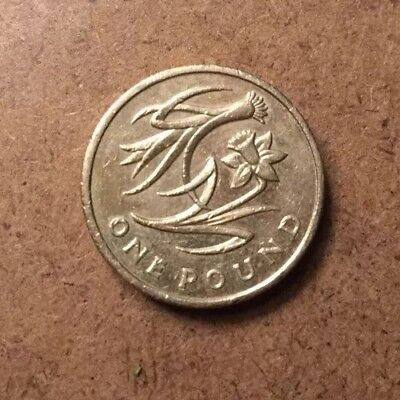 Welsh Floral £1 One Pound Coin Rare Wales 2013