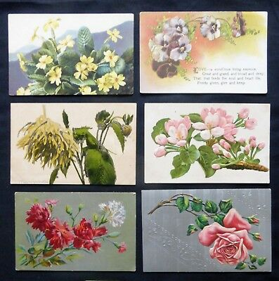 Lot of 6  VINTAGE FLOWER GREETINGS      #2569