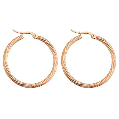 316L Stainless Steel Rose Gold Plated Hoop Earrings Women Round Ear Jewelry Gift