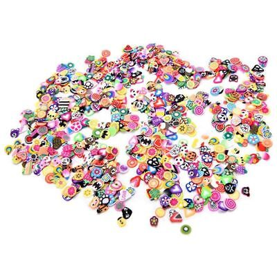 2000 Pieces 3D Fruit Flower Fimo Slices for Slime, DIY Crafts, Nail Art Decor 1J
