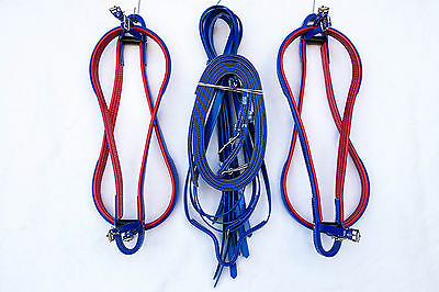 Flat Pacing Hopples - Blue - Red Trim
