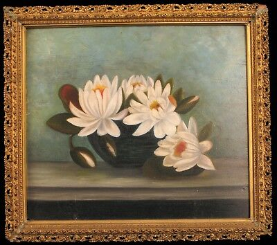 Antique Oil Painting On Board White Japanese Water Lily In Bowl Ornate Frame !