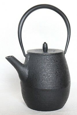 Japanese Vintage Cast Iron Teapot Kettle Tetsubin Black with Filter