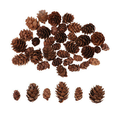 50x Mixed Decorative Pine Cones for Home Party Christmas Ornament Decoration
