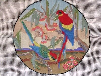 Completed Long Stitch Of Rosellas & Blossoms  28.5 Cms High X 29Cms Wide