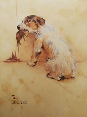 """the Blighter"", Antique Original Watercolour Painting - Terrier Who Caught A Rat"