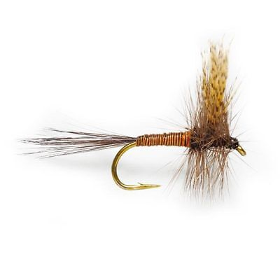 TUNG-12 1 DOZEN  TUNGSTEN HEAD QUILL /& RED SPANISH NYMPHS FOR FLY FISHING