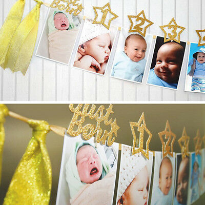 FJ- 1st Birthday Recording 1-12 Month Photo Banner Garlands Monthly Bunting Deco