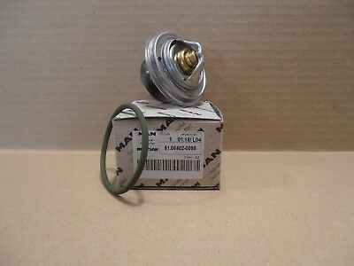 Thermostat Man 51.064202-0099