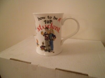 Dunoon How to be a A* Top Student Fine Bone China Mug New Ex Condition