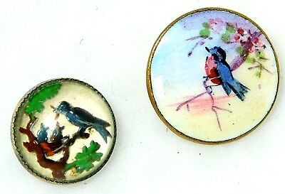 TWO Antique Buttons BlUEBIRD Enamel and Bluebird INTAGLIO 9/16 and 11/16 B17
