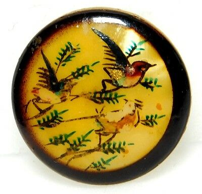 Antique Button Hand Painted CELLULOID Birds in Plant Life Scene 7/8 A1