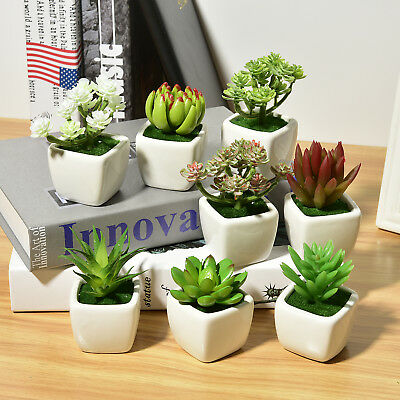 New Cactus Potted Plastic Artificial Grass Succulents Plants With Pot Home Decor
