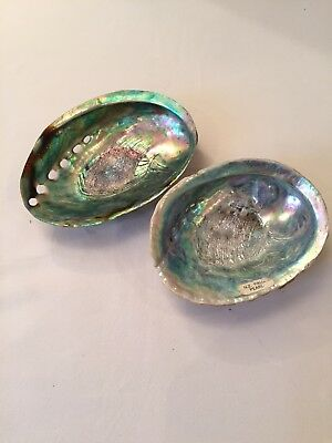 Vintage Large Abalone Paua Mother Of Pearl Pair Of Seashells