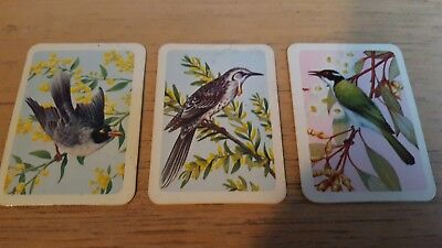 Tuckfields blue back bird cards