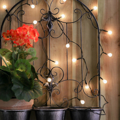 50 White LED Berry Outdoor Battery Operated Fairy Lights with Timer