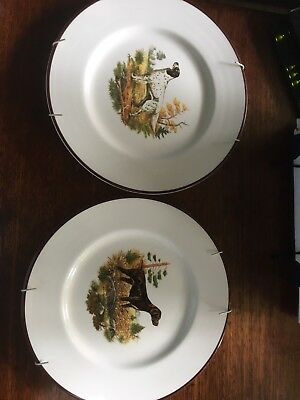 Hunting Dogs Stafordshire Plates