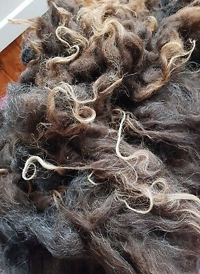 400Gr Strong Perendale Raw Wool Fleece Spin Felt Weave Textiles Crafts