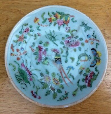 antique chinese plate 19th Century Famille Rose Celadon plate