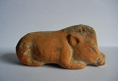 OUTSTANDING! Ancient (618-907) Chinese TANG Dynasty PIG Boar CERAMIC Red BLACK