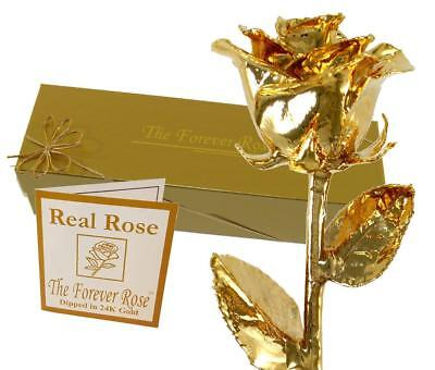 24K Gold Dipped Real Rose w/Gold Gift Box by The Original Forever Rose USA