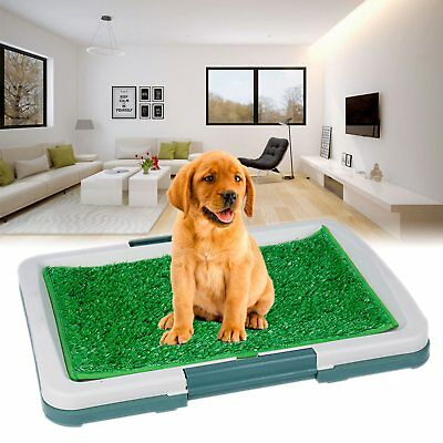 Indoor Pet Dog Puppy Potty Training Toilet Large Loo Pad Tray w/ Grass Portable