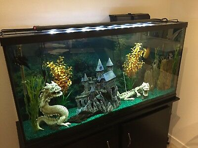 complete 60 gallon fish tank with stand 300 00 picclick