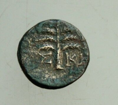 Greek Bronze coin AE 13mm 2g Palm Horse