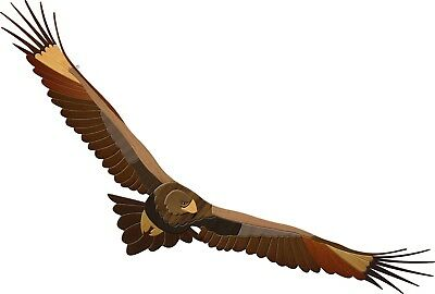 Aussie Intarsia Pattern - Wedge Tail Eagle
