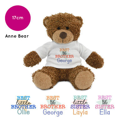 Personalised Name Best Sister Brother Little Big Sibling Anne Teddy Bear Gifts