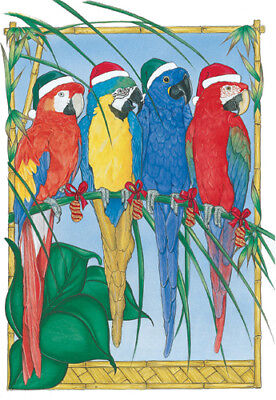 Macaw Parrot Christmas Cards 10 cards & 10 envelopes
