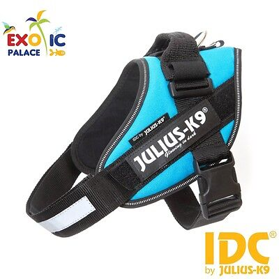Julius-K9 Idc Powerharness Aquamarine Harness Adjustable For Dog Nylon Dog