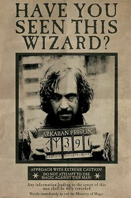 Harry Potter Wanted Sirius Black Poster Mehrfarbig