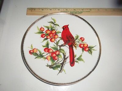 Vintage Plate With Cardinal Bird On Branch With Berries