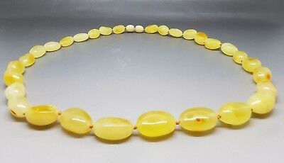 "21,3"" Beautiful Genuine Baltic Amber Necklace Butterscotch White Honey"