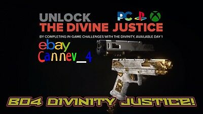 Black ops 4 Divinity Signature skin XBOX/PS4/PC Bo4 New Year 2019 Promotion !!!