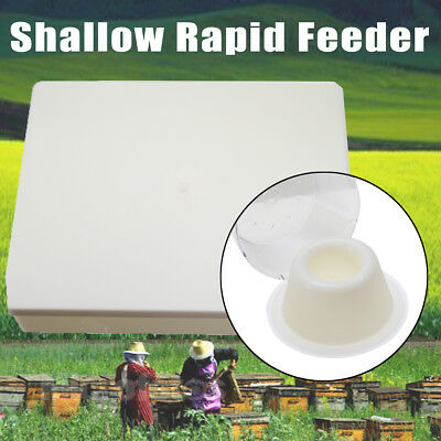 4 Litres 1 Gallon(8 pints) Shallow Rapid Feeder For Bees Feeding Transparent Cup