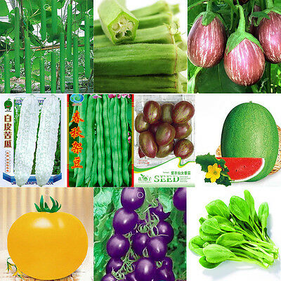 Garden Vegetable Seed Produce Non-GMO seeds Bank Survival Fruit Organic Plant r