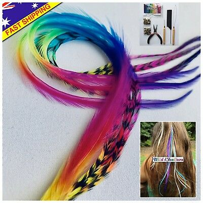 Feather Hair Extensions REAL Rainbow Feathers 7pc Grizzly Tools Beads Craft Kit